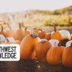 Central Oregon Weekend Planner  October 25-27, 2019
