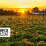 Seattle Events Weekend Planner October 3-6, 2019