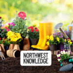 Seattle Metro Weekend Events Planner: February 27-March 1, 2020