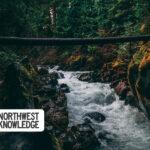 Oregon and SW Washington Weekend Events: September 18-20, 2020