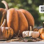 Oregon and SW Washington Weekend Events: October 15-18, 2020